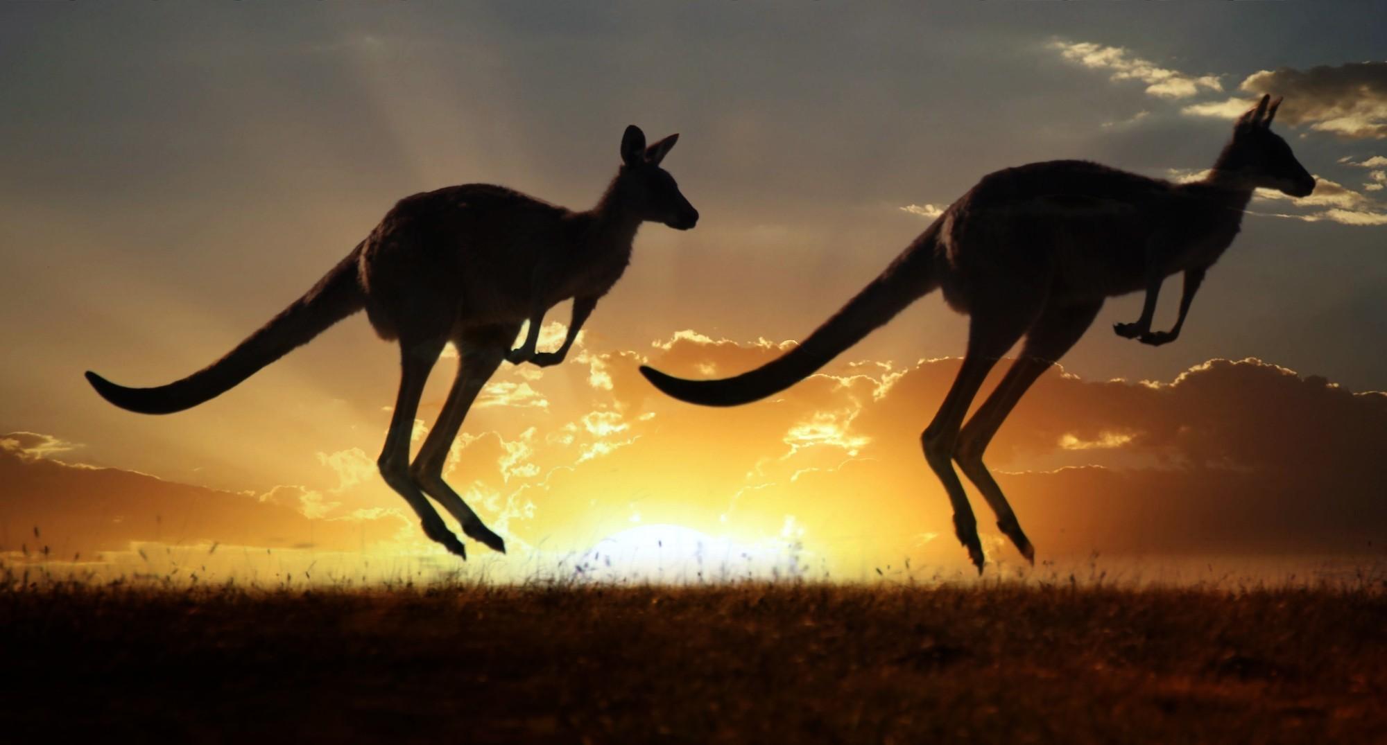 Case Cinematografiche Australiane : Ilclanmariapia le case nei film