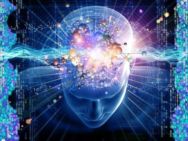 Il tuo cervello può memorizzare 1 petabyte di dati