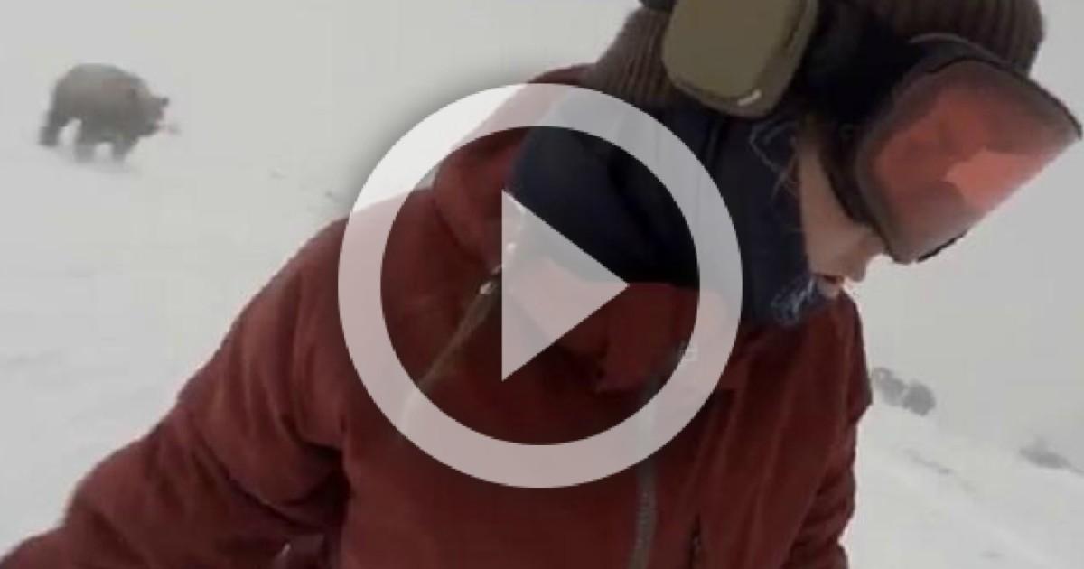 Sfugge all'orso per un soffio: discesa con lo snow da paura