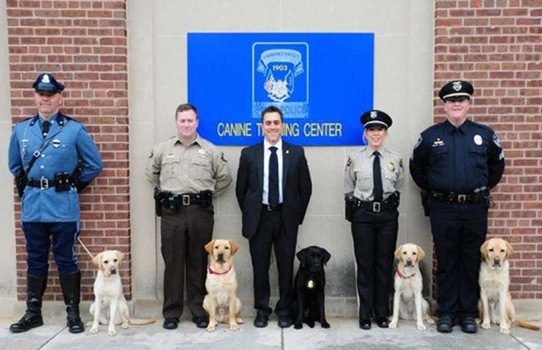 02 esd dogs ct police dog grads