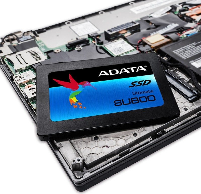 adata ultimate su800 02