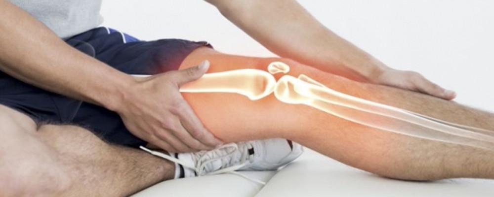 Le ossa stampate in 3D aiutano quelle vere a rigenerarsi