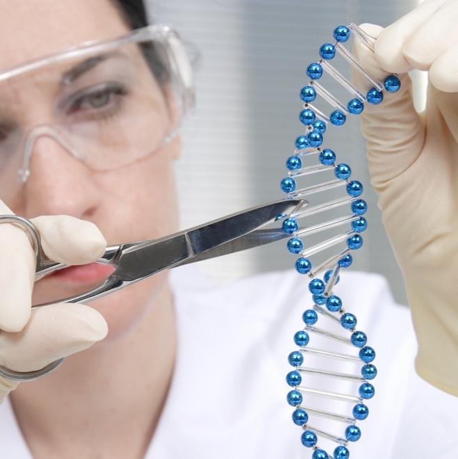Editing genetico: primo taglia e incolla su uomo malato di tumore