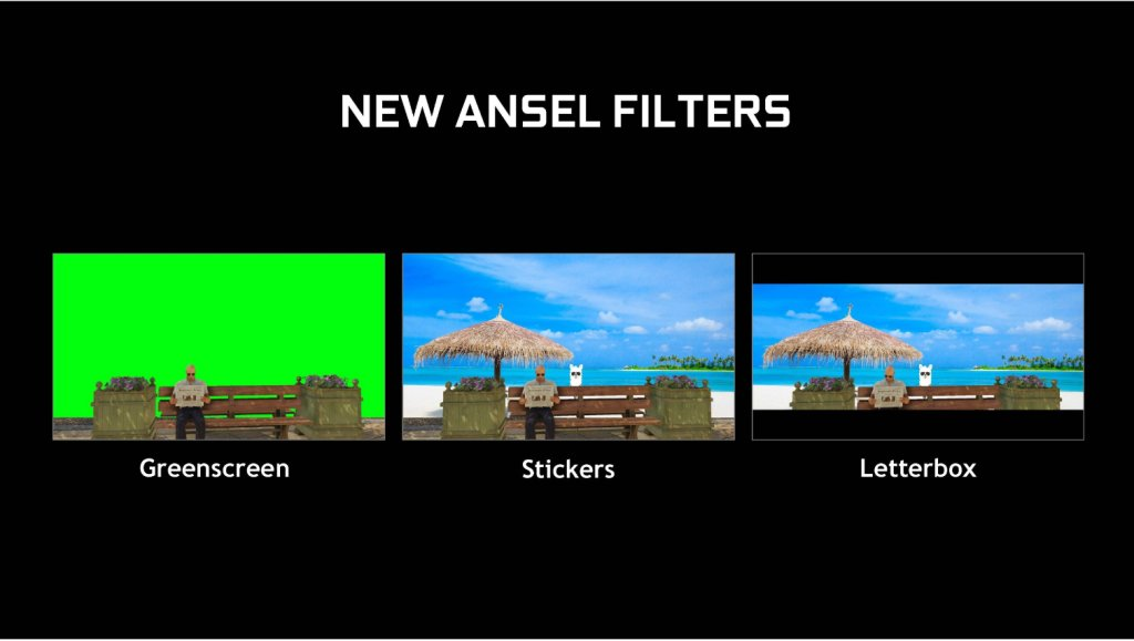 ansel filters