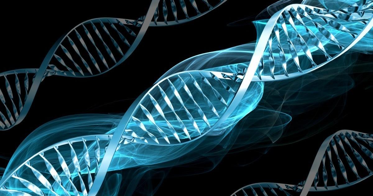 """Farmaci su misura grazie ai """"computer"""" del DNA"""