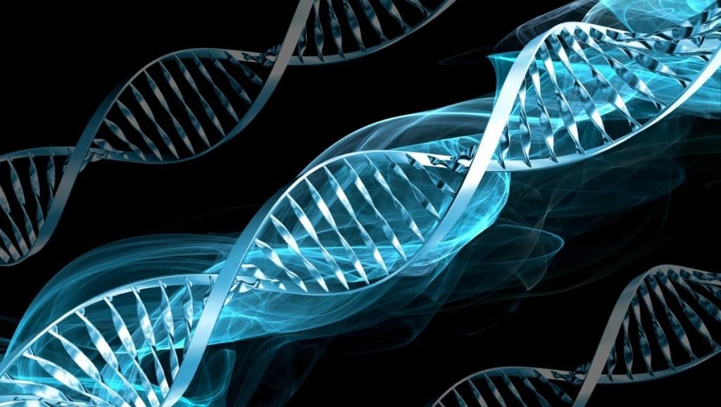 """Farmaci su misura grazie ai """"computer"""" del DNA - Tom's Hardware"""
