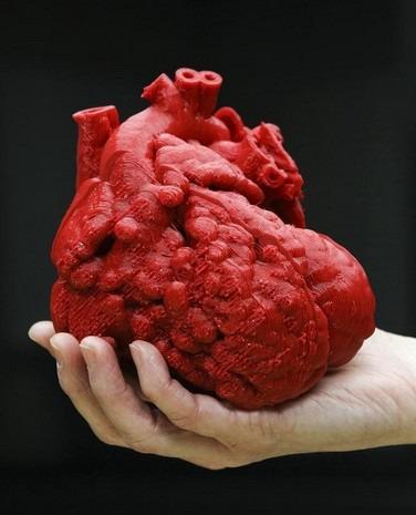 Molto Cuore umano stampato in 3D in aiuto del chirurgo - Tom's Hardware NR73
