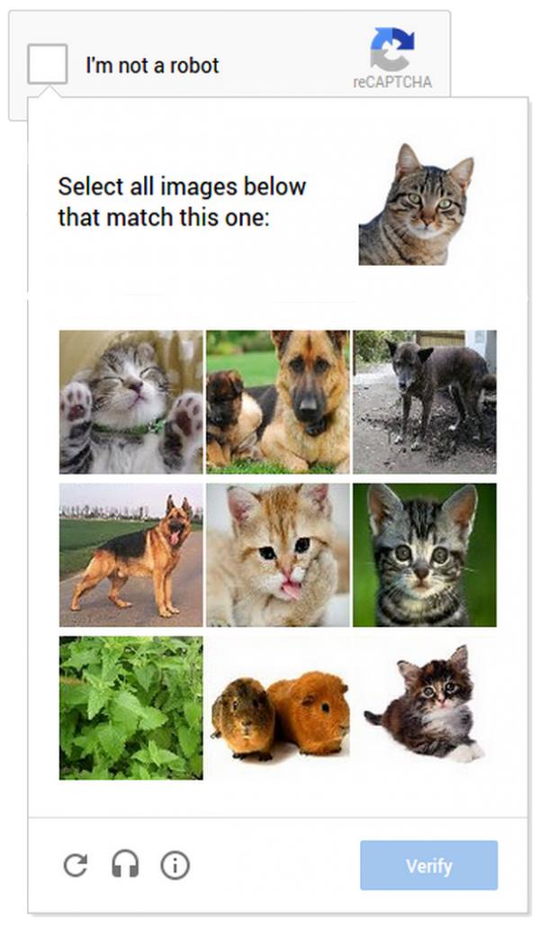 No CAPTCHA reCAPTCHA