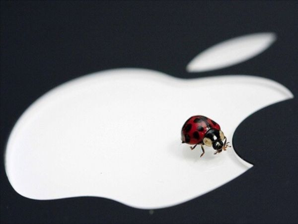 Apple bug OS X