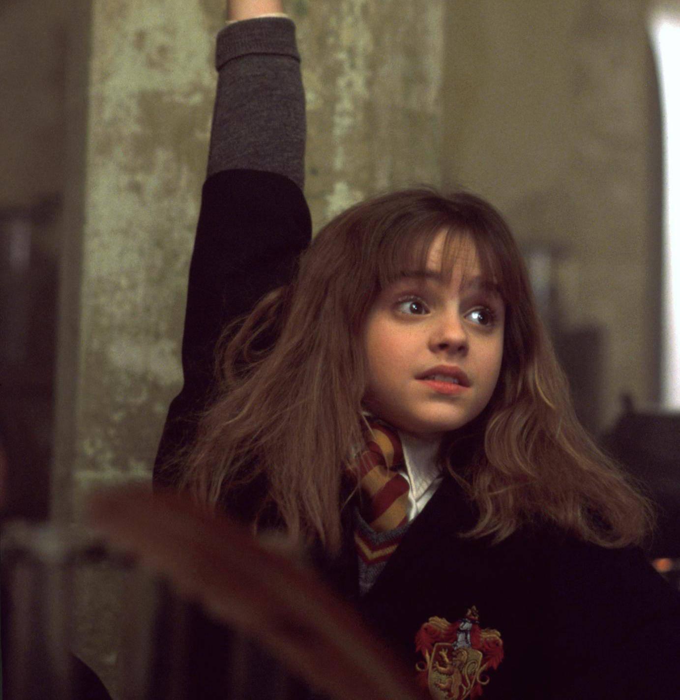 Harry Potter Retrocult