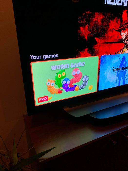 Google Stadia foto leak interfaccia e gioco