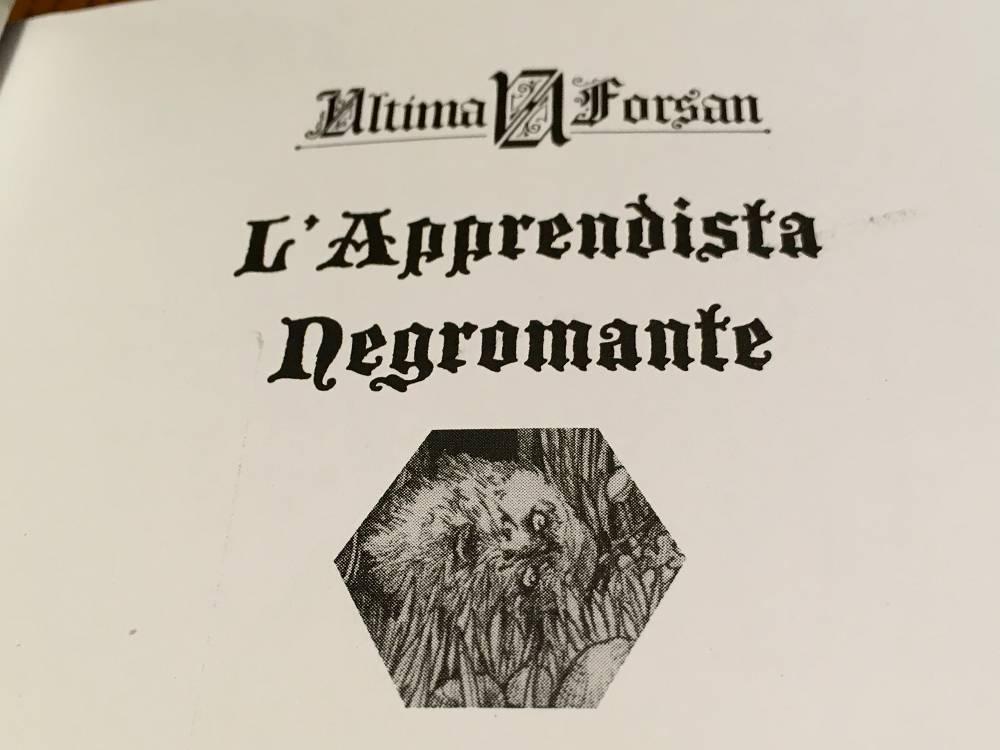 L'Apprendista Negromante