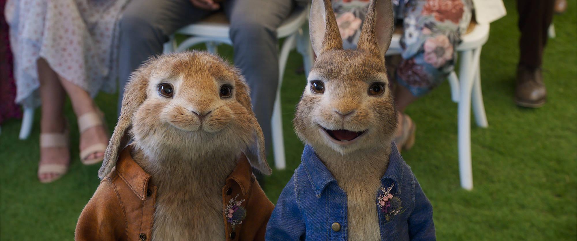 peter_rabbit_2