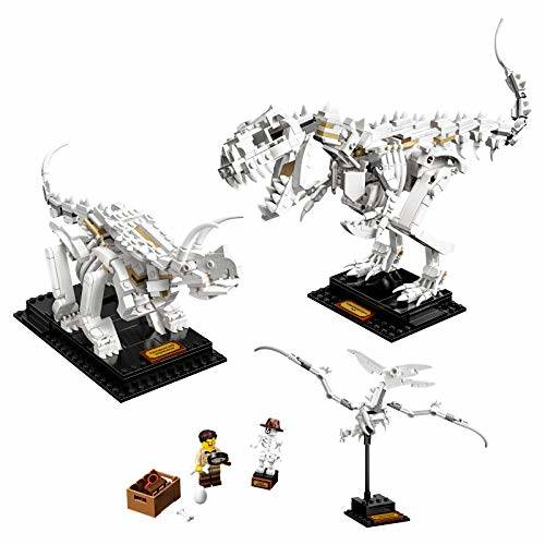Lego Ideas Fossili Dinosauri