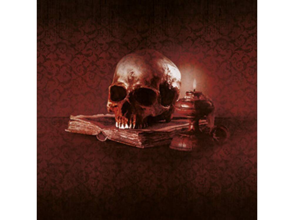 Alla ricerca del Principe Dracula, la nostra recensione