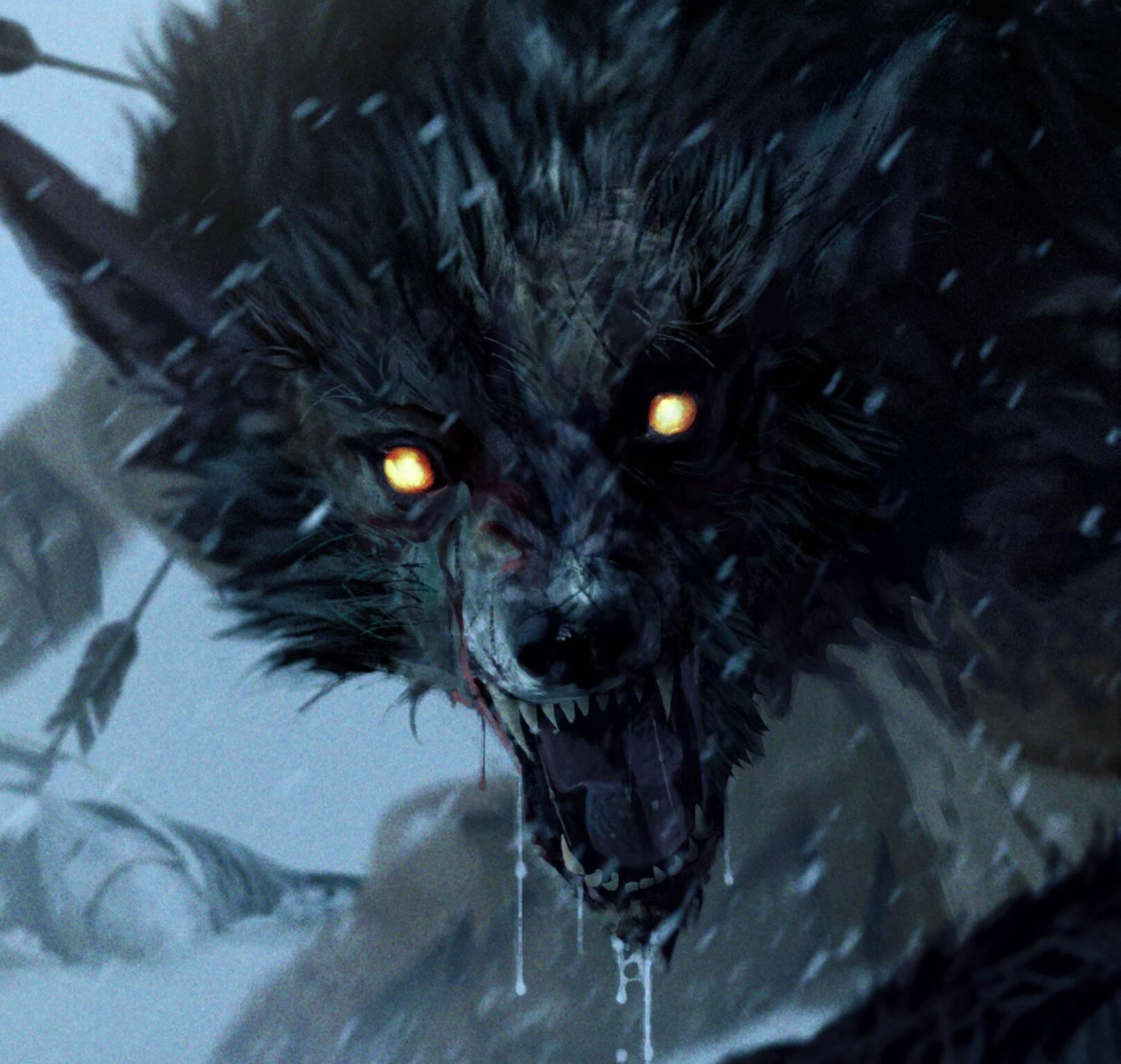 Diario di un Witcher
