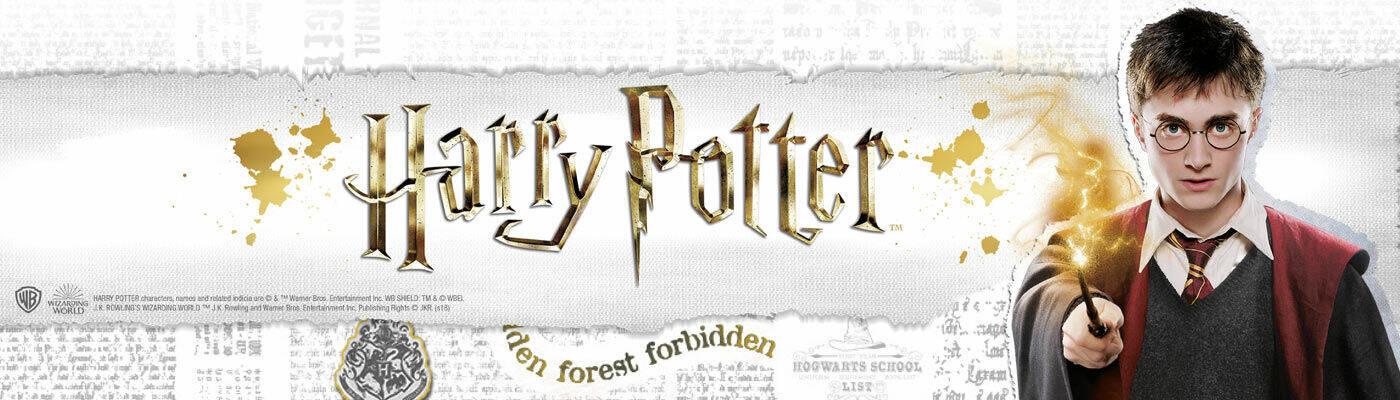 harry potter EMP