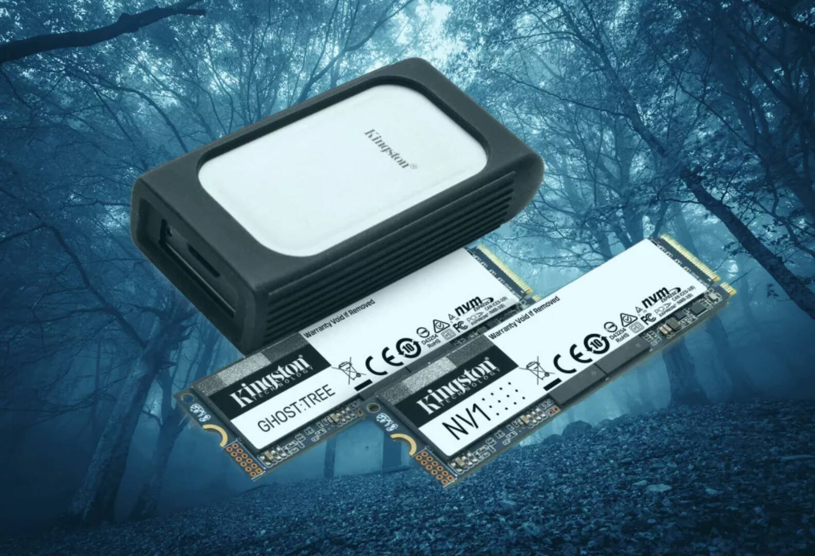 Kingston Ghost Tree NVMe SSD