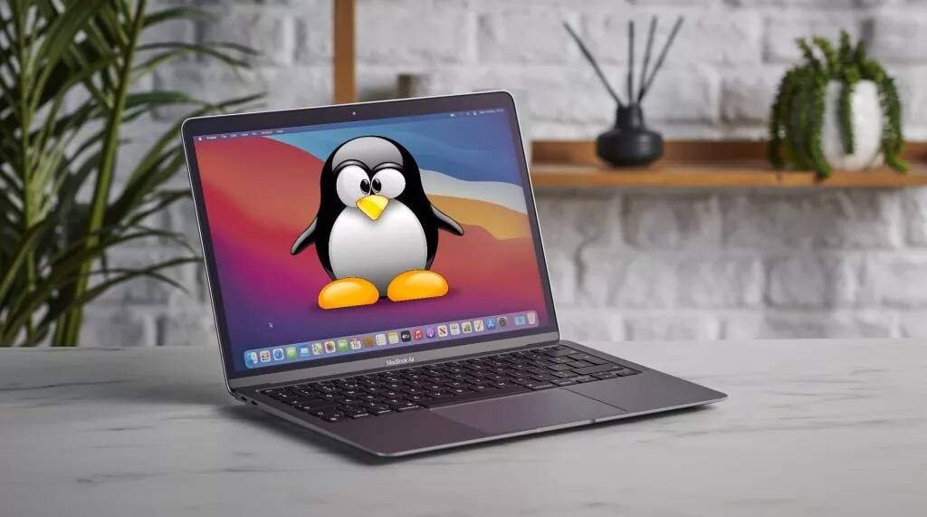 Mac + Linux