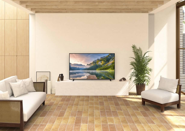 Panasonic TV 2021