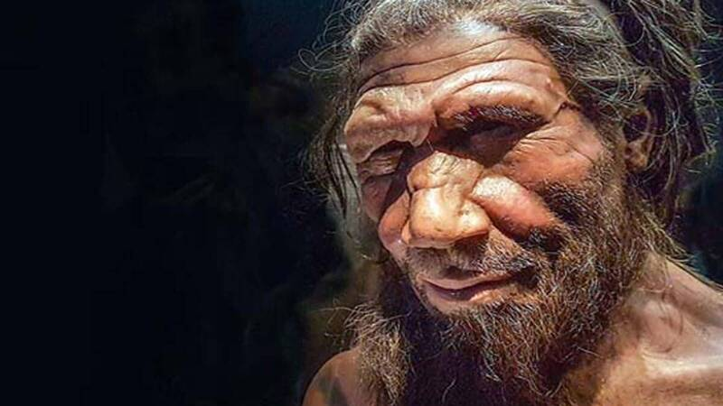 Latina, the remains of nine Neanderthals have been found