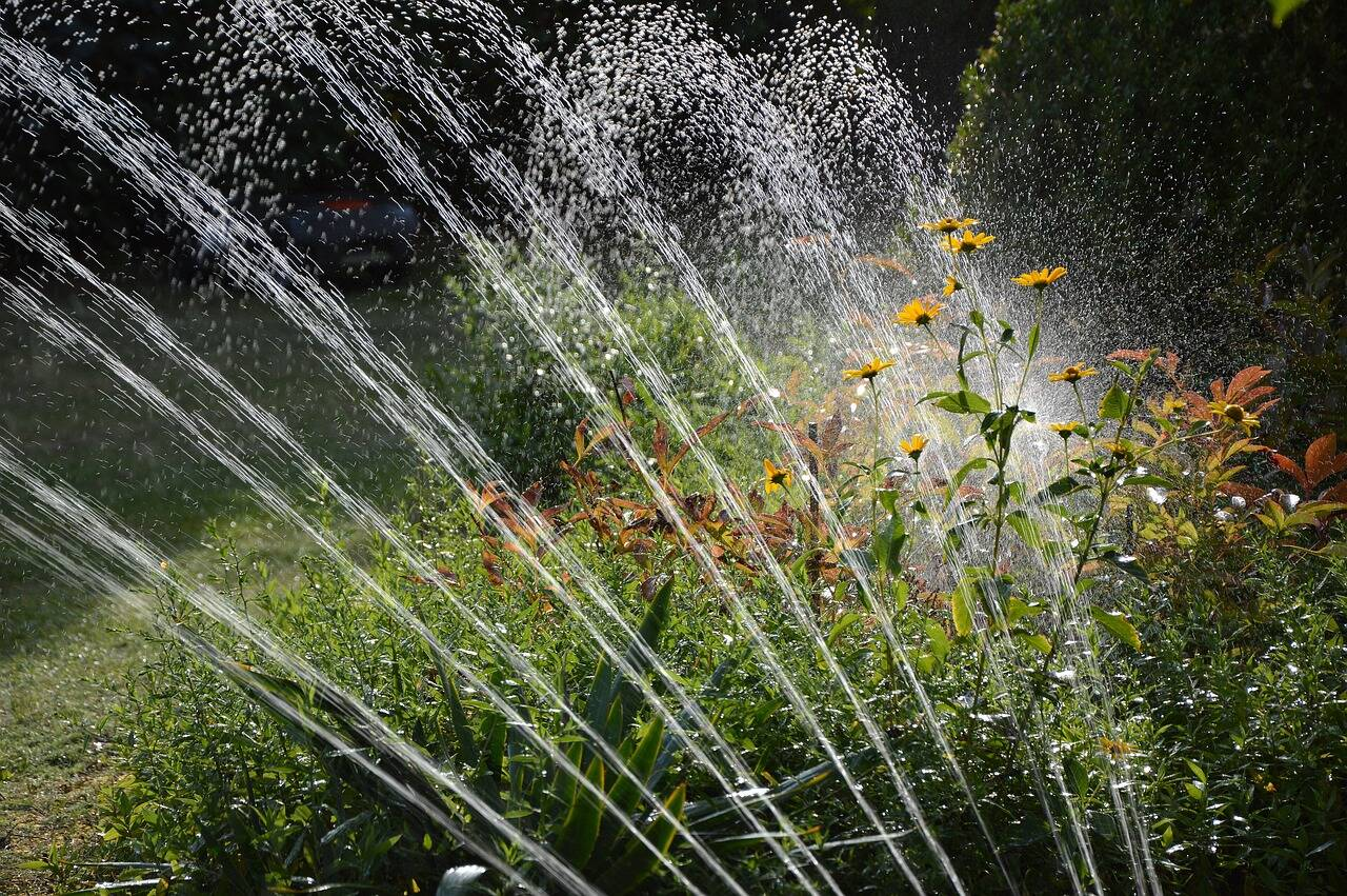 I migliori irrigatori