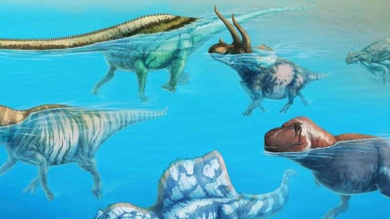 I dinosauri sapevano nuotare?
