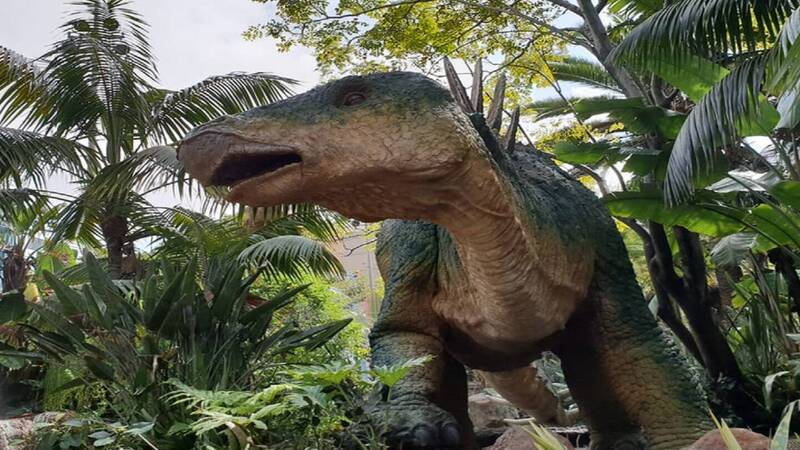 Did dinosaurs know how to swim?