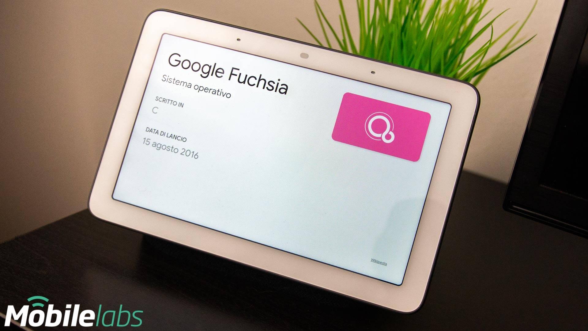 Fuchsia OS + Google Nest Hub