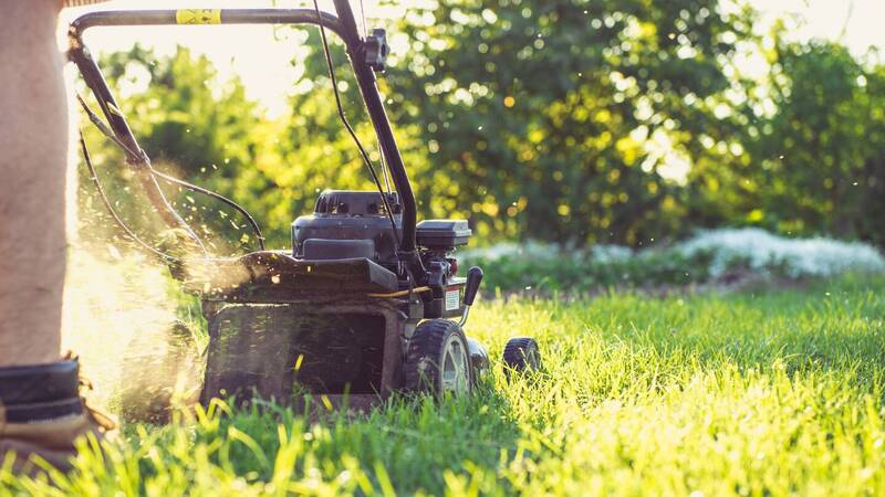 Amazon: many offers on Sprint lawn mowers and garden tools