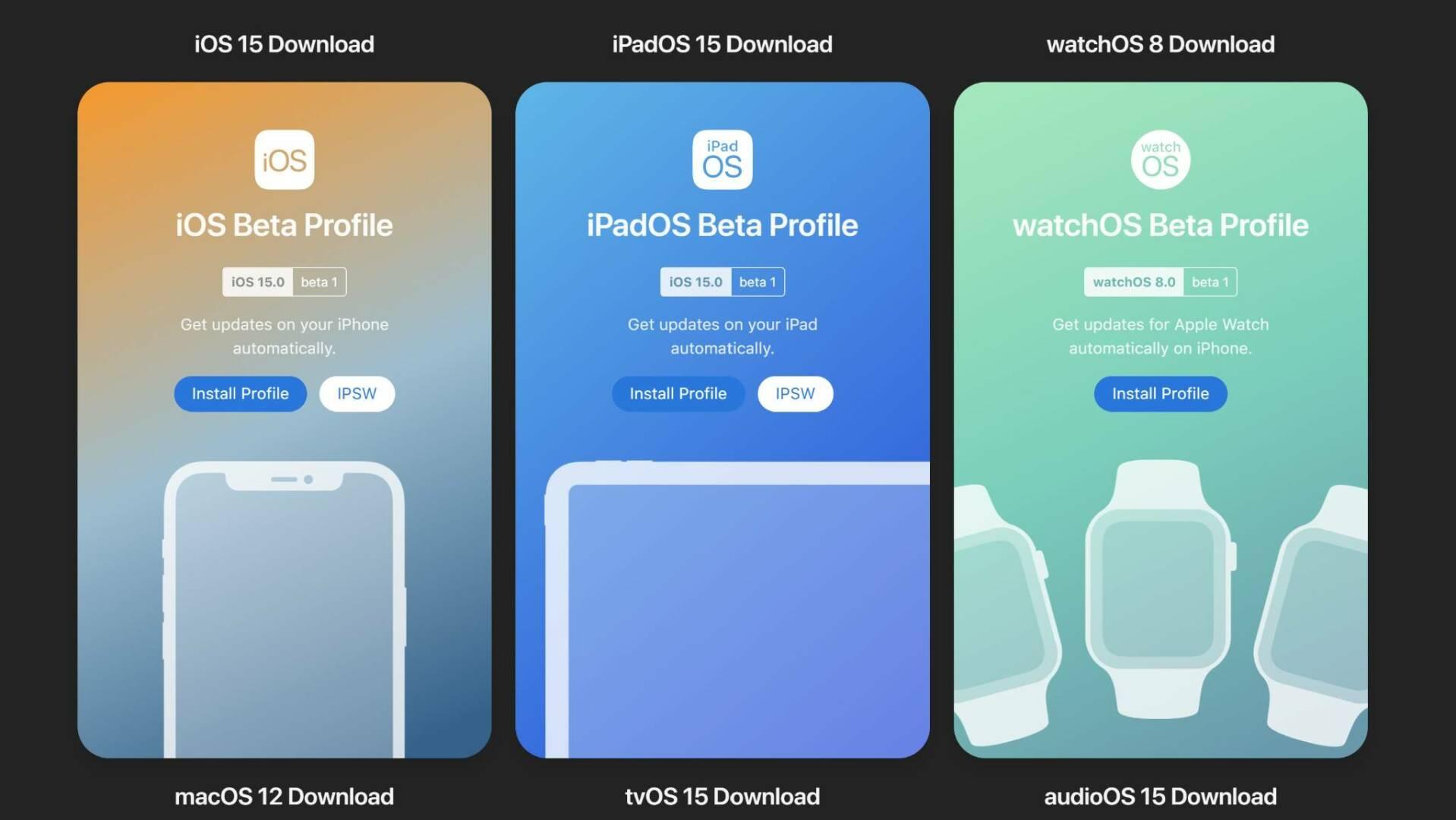 iOS 15 / iPadOS 15 profilo sviluppatore
