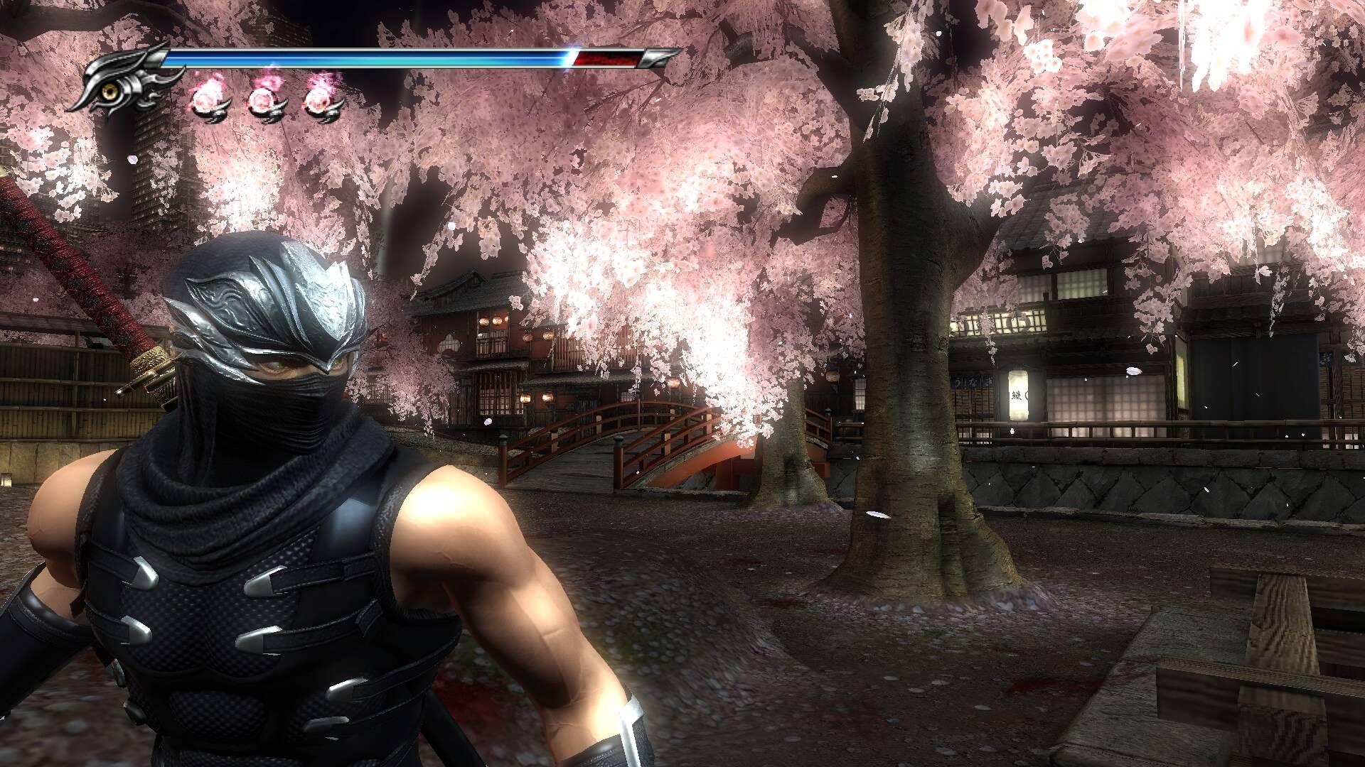 Ninja Gaiden 2 scr2