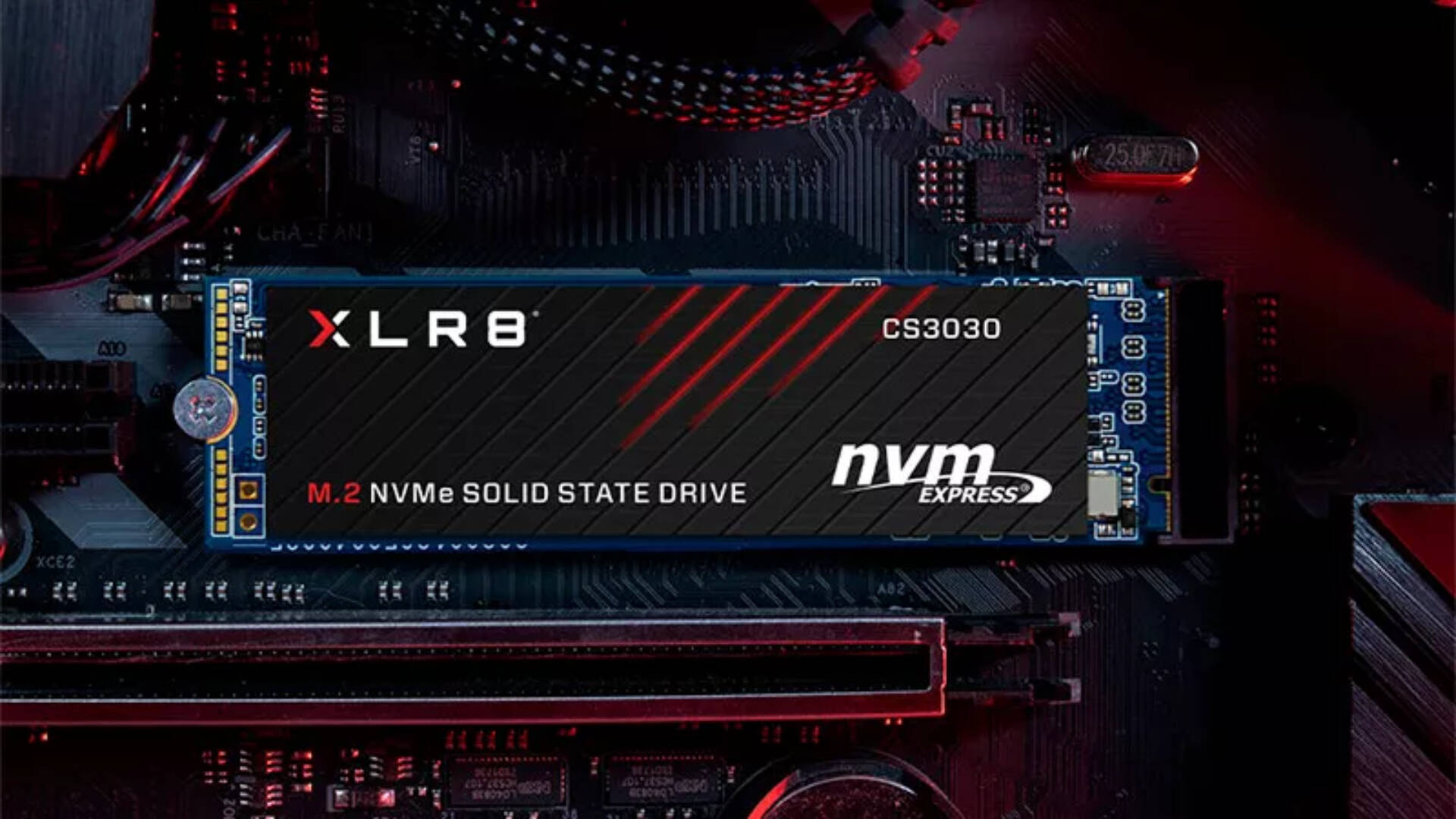 PNY XLR8 CS3030 SSD