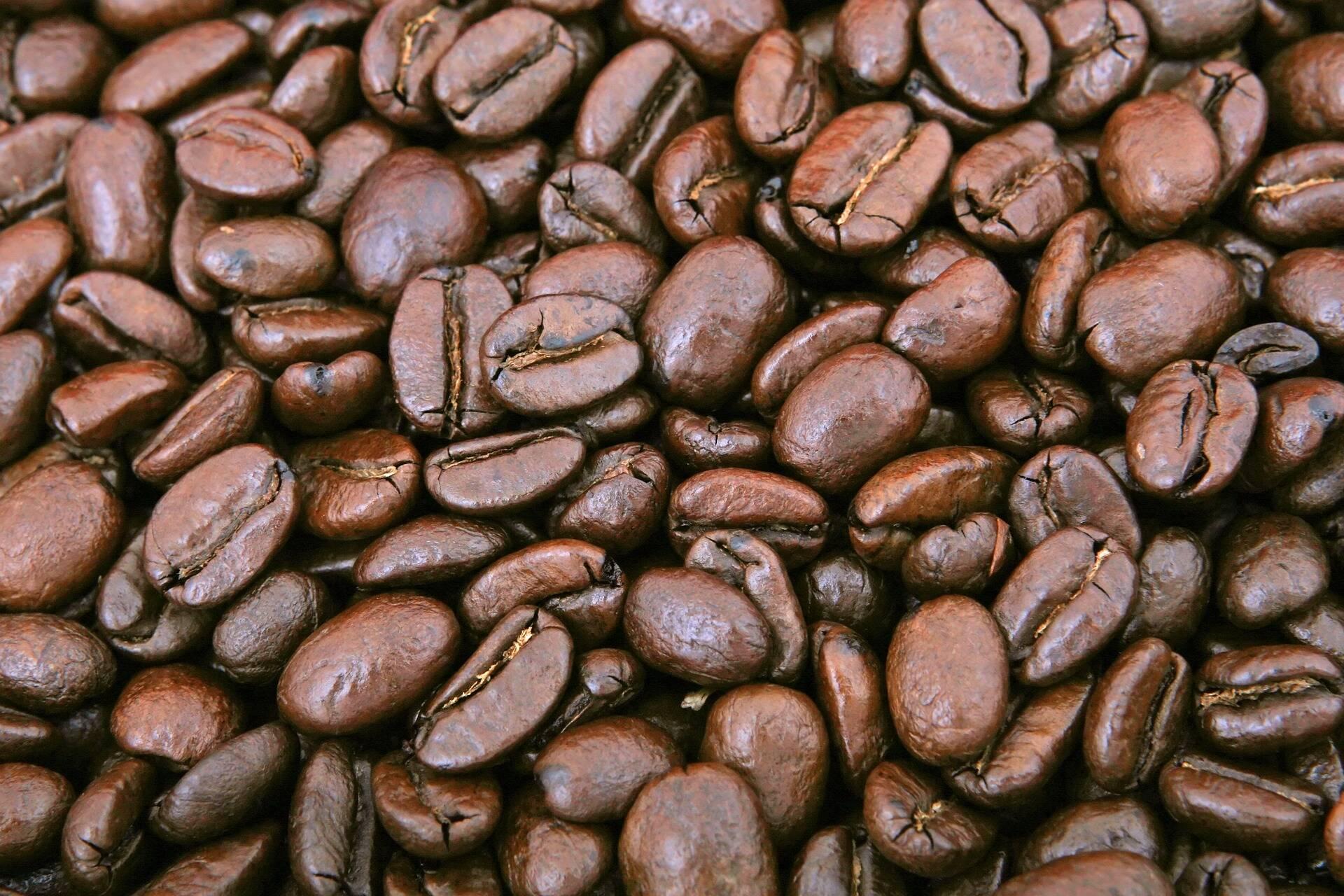 caffè_copertina