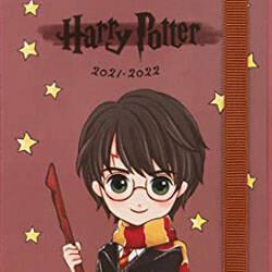 diario harry potter 21-22