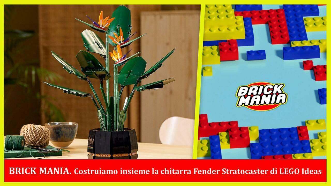 BRICK MANIA LEGO CREATOR EXPERT UCCELLO DEL PARADISO